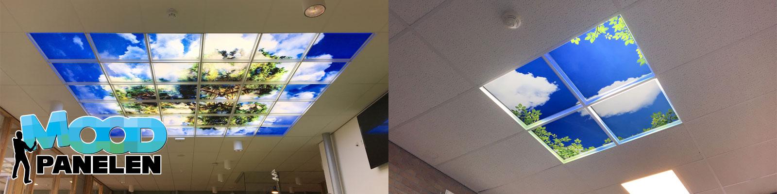 Creëer uw eigen wolkenplafond met onze moodpanelen.